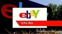 E-BAY Full-Form   What is Echo bay (E-BAY)
