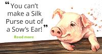 You can't make a silk purse out of a sow's ear