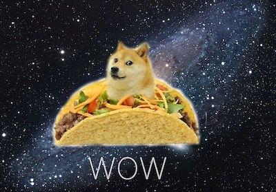 wow doge