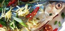 Ikar Bakar