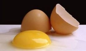 the amazing and super delicious EGG!