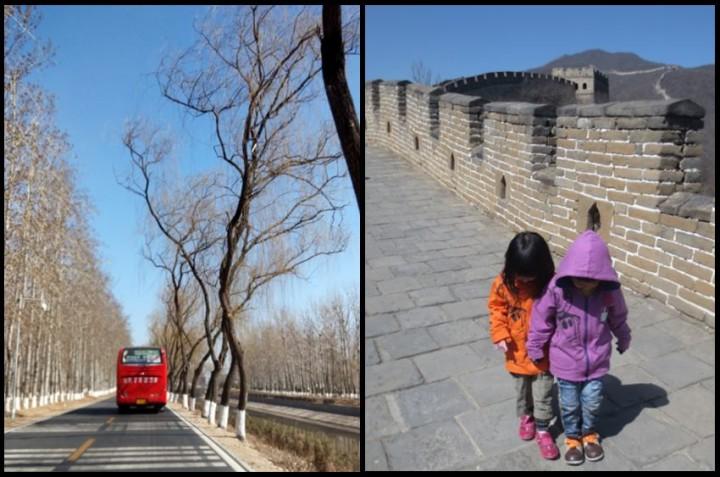 Gemini enjoyed both the drive and the Great Wall at Mutianyu!