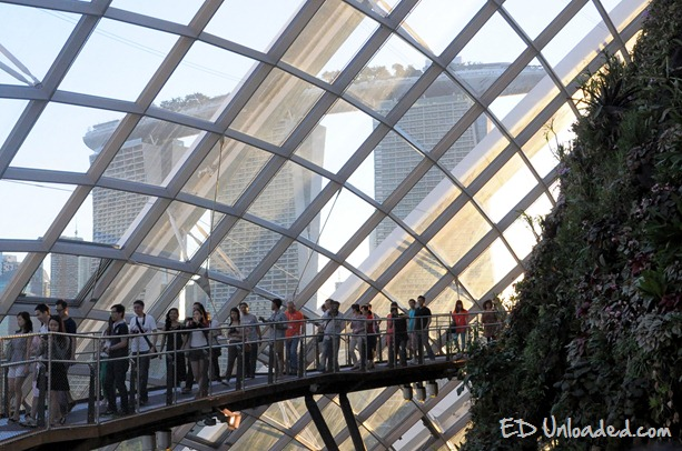 skywalk singapore