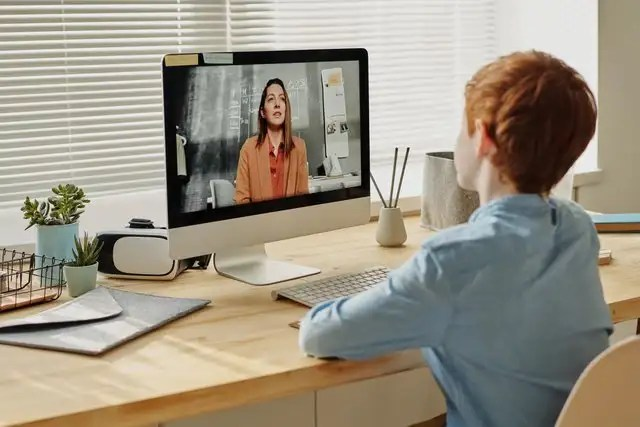 How national governments can ensure safe home distance learning
