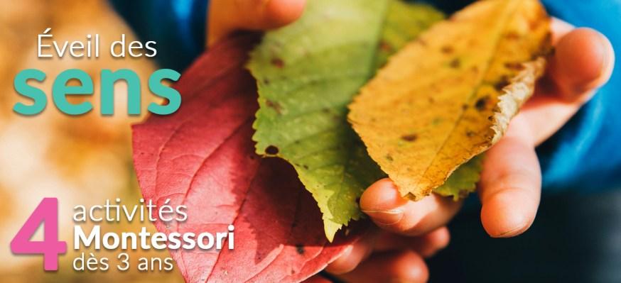 Éveil des sens : 4 activités Montessori à partir de 3 ans