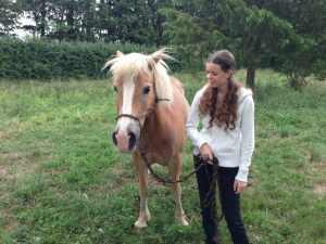 Le cheval et sa dresseuse attentif l'un à l'autre