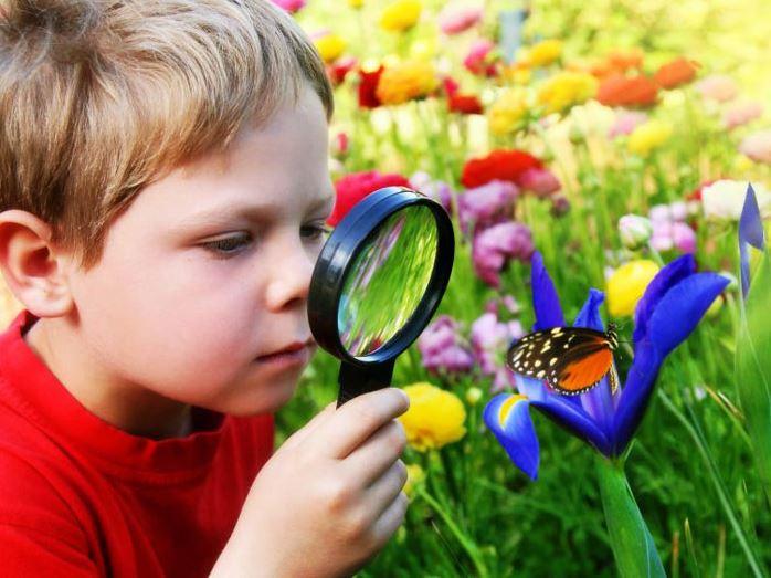 التعلم بالاكتشاف Discovery Learning