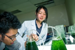 Best Pre-University (Pre-U) Courses to Study in Malaysia