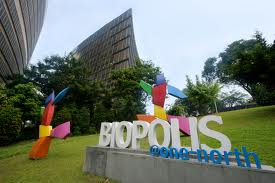 Top biotech research at Biopolis Singapore