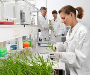 An exciting career in biotechnology