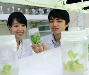 Biotechnology lab at UCSI University