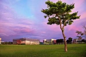 Curtin Sarawak's impressive 300-acre campus opened in 2002, in the suburb of Senadin, in Miri.