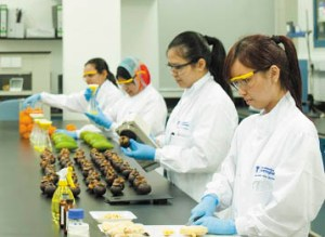 UK Top Ranked Biotechnology Degree at the University of Nottingham Malaysia