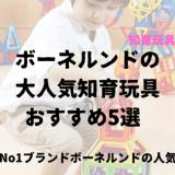 大人気ボーネルンドのおすすめ知育玩具とっておきの5選