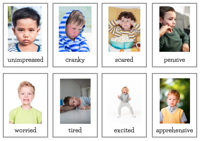 how to teach new words using flash cards