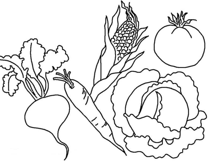 Jesien Warzywa Kolorowanki 1 Jesienne Malowanki Dla Dzieci Do Druku