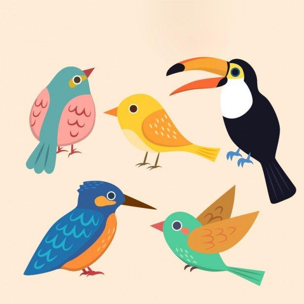 Spotkanie z ptakami Agata Dziechciarczyk Międzynarodowy Dzień Ptaków Wierszyki Wiosna