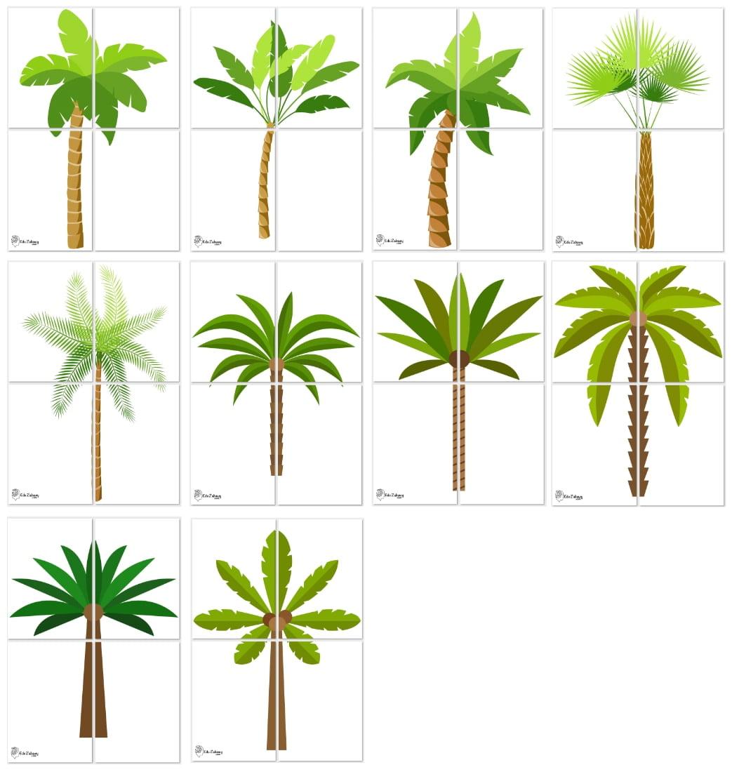 Dekoracje XXL: palmy (10 szablonów) Dekoracje Dekoracje XXL (Pożegnanie przedszkola) Dekoracje XXL (Zakończenie roku)