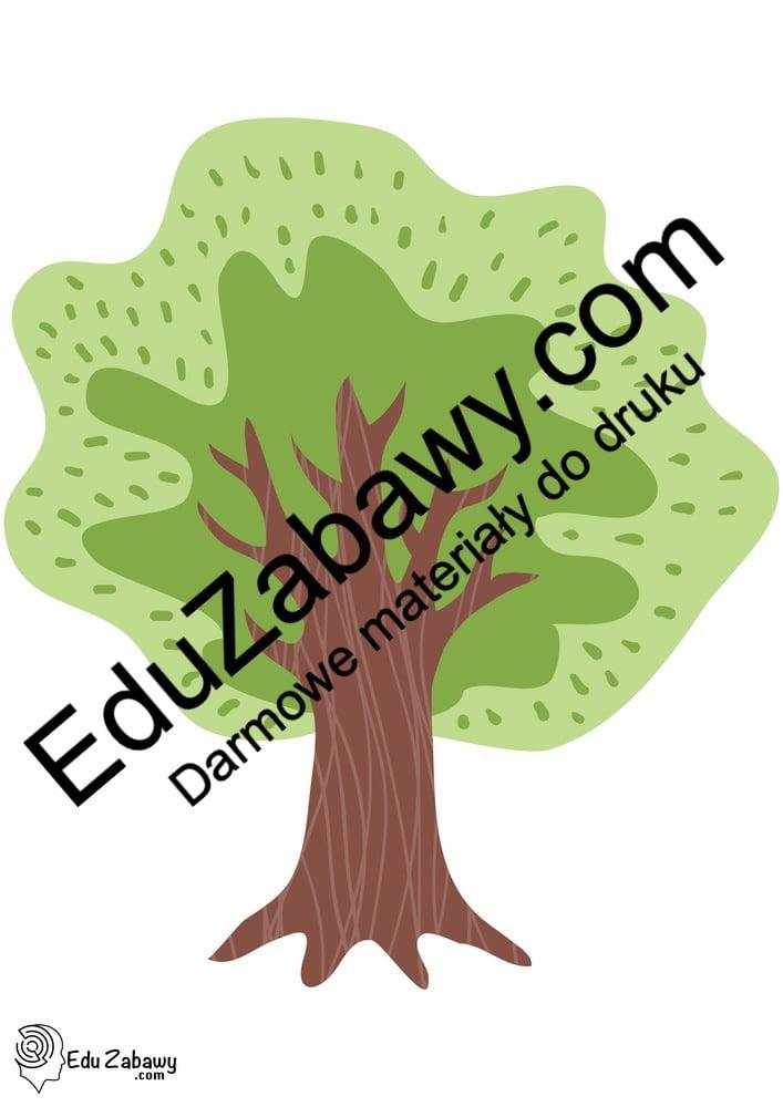Drzewa: Dekoracje (31 szablonów) Dekoracje Dekoracje (Dzień Drzewa) Dekoracje (Dzień Jeża) Dekoracje (Jesień) Dekoracje (Lato) Dekoracje (Wiosna) Dzień Drzewa Dzień Lasu Lato
