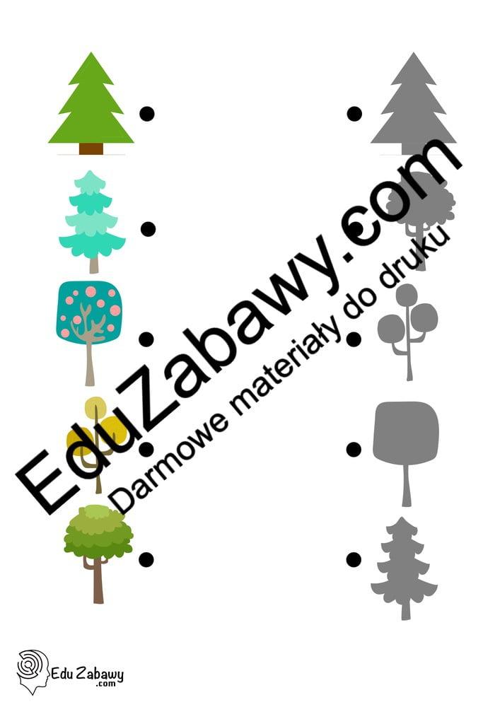 Dzień Drzewa: Dopasuj cienie (10 kart pracy) Dopasuj cienie Karty pracy Karty pracy (Dzień drzewa)