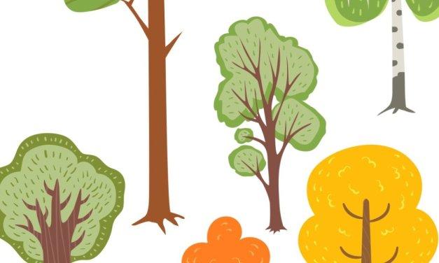 Dzień Drzewa: Nauka liczenia (10 kart pracy)