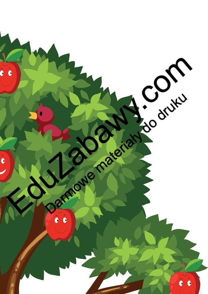 Dekoracje: Drzewa owocowe XXL (6 szablonów) Dekoracje Dekoracje (Dzień Drzewa) Dekoracje (Jesień) Międzynarodowy Dzień Ptaków