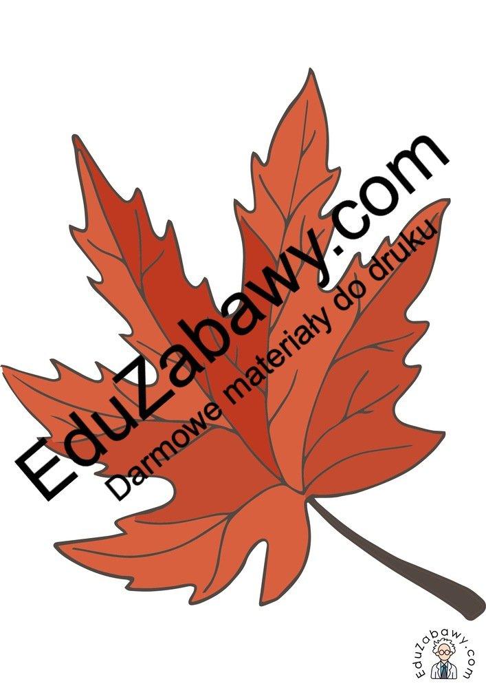 Dekoracje: Liście (10 szablonów) Dekoracje Dekoracje (Jesień)
