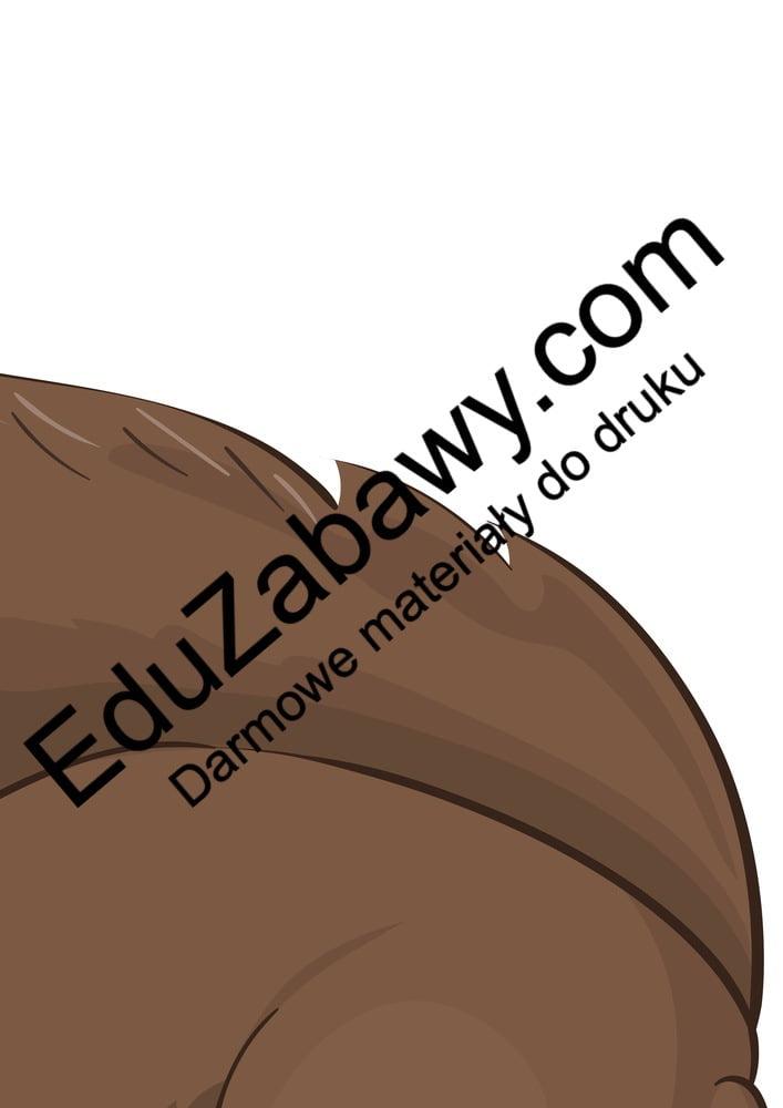 Dekoracje XXL: Wiewiórki (10 szablonów) Dekoracje Dekoracje (Jesień)