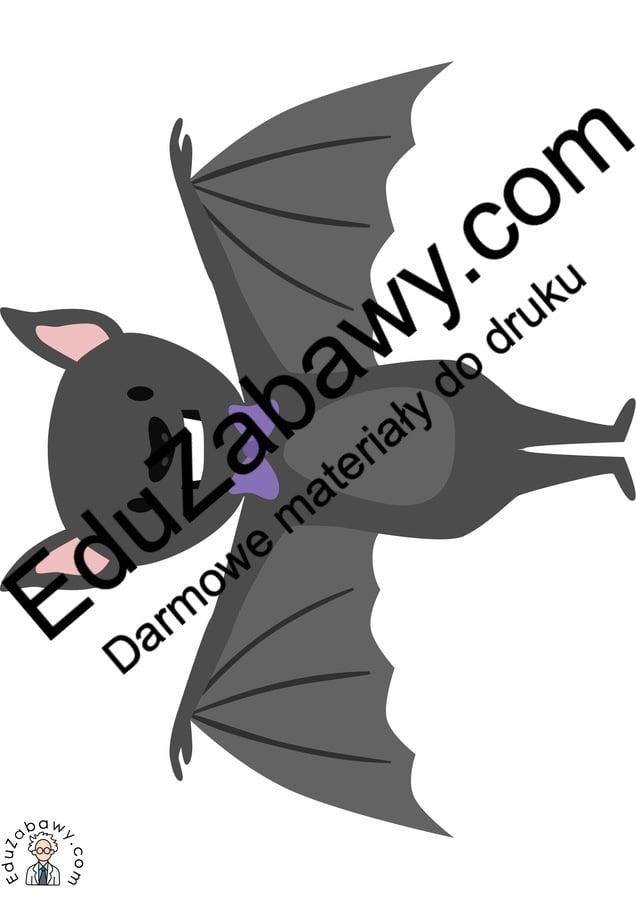 Dekoracje: Nietoperze Dekoracje Dekoracje (Halloween) Święto Dyni / Halloween