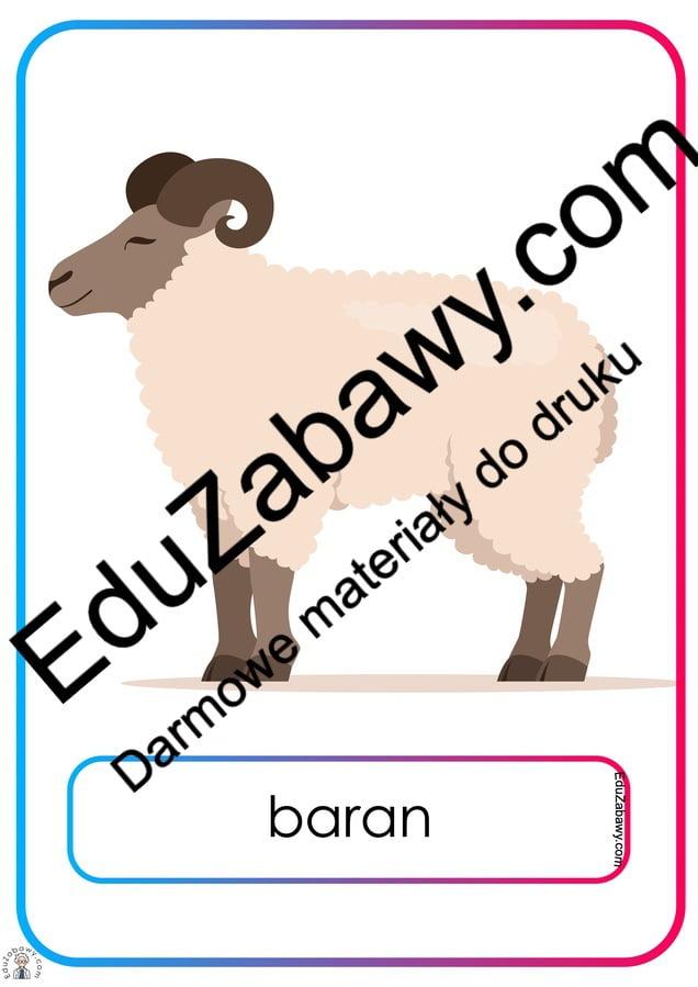 Plansze dydaktyczne: Zwierzęta wiejskie (19 plansz) Na wsi Plansze dydaktyczne Plansze dydaktyczne (Na wsi)