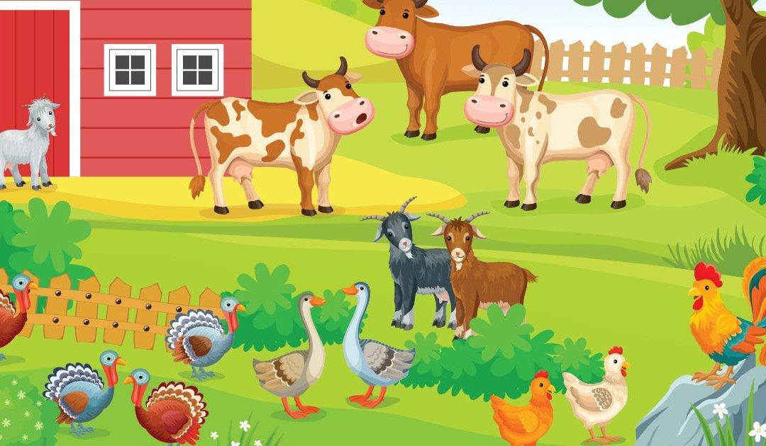 Plansze dydaktyczne: Zwierzęta wiejskie (19 plansz)