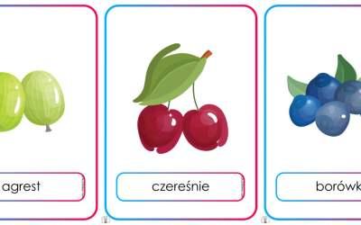 Plansze dydaktyczne: owoce (13 plansz)