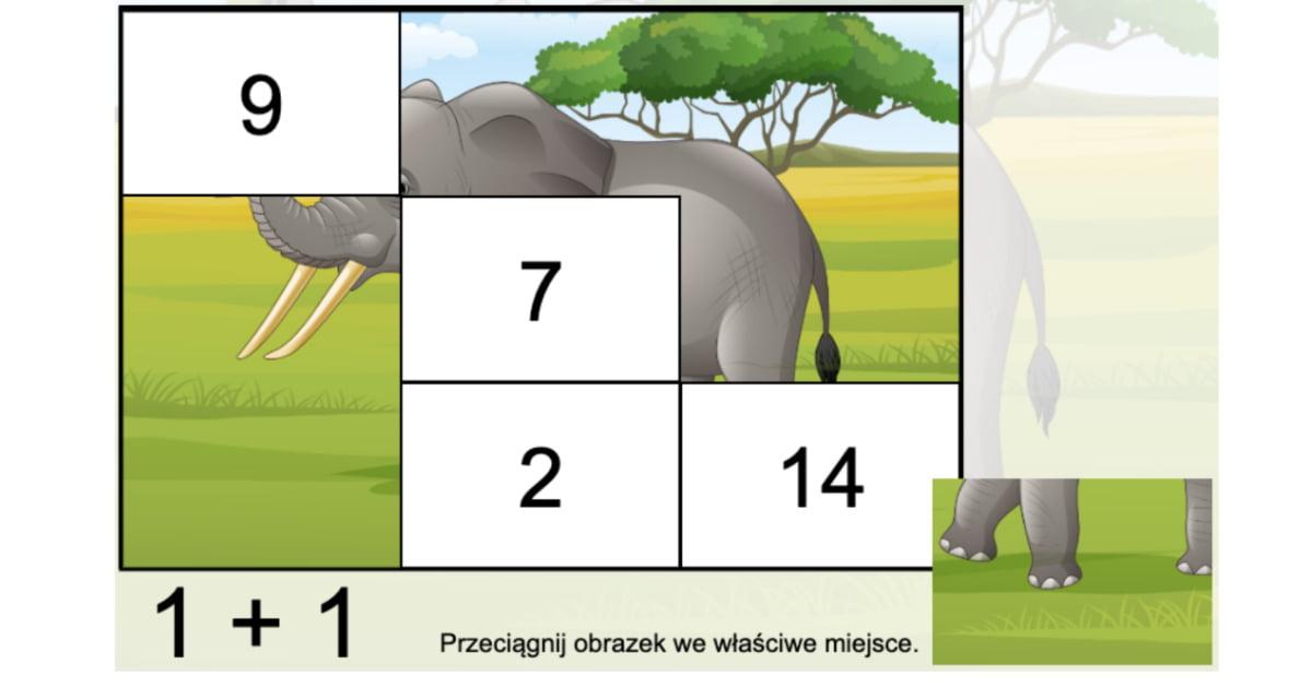 Gra online: Puzzle matematyczne: Zwierzęta dzikie