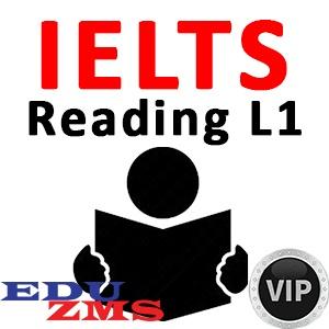 Reading Level 1 Course - VIP Silver