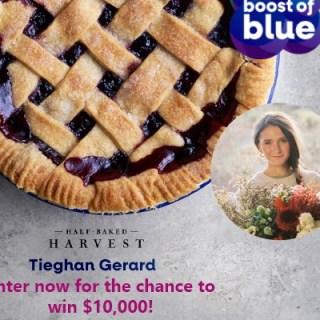 Americas Best Blueberry Pie Contest