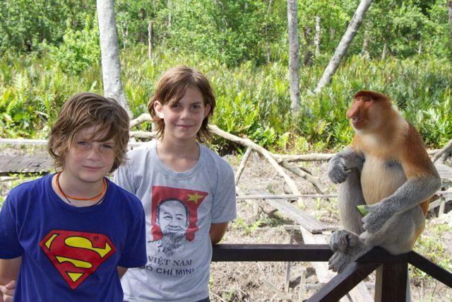 Proboscis Monkey 24