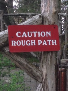 Rough path ahead