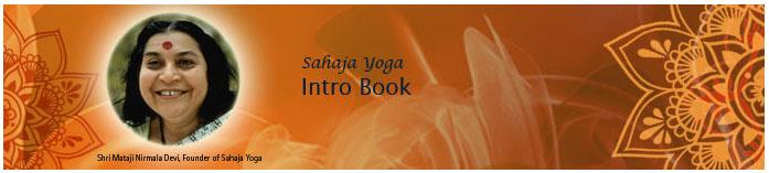 SY intro-book