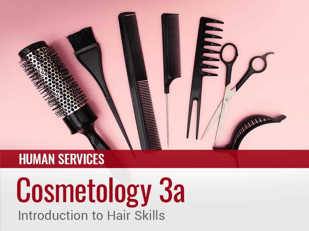 Cosmetology 3a Introduction To Hair Skills