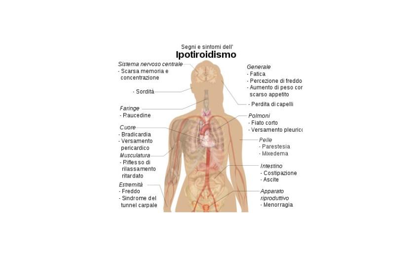ipotiroidismo-dott-ssa-edy-virgili