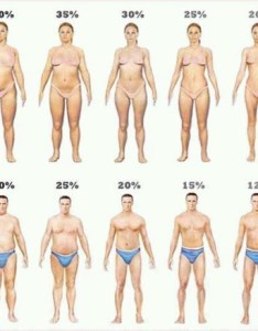 Men and women visual bodyfat cartoon also check your body fat percentage online rh nowloss