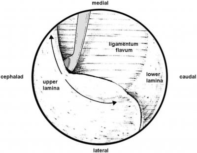 Internet Scientific Publications
