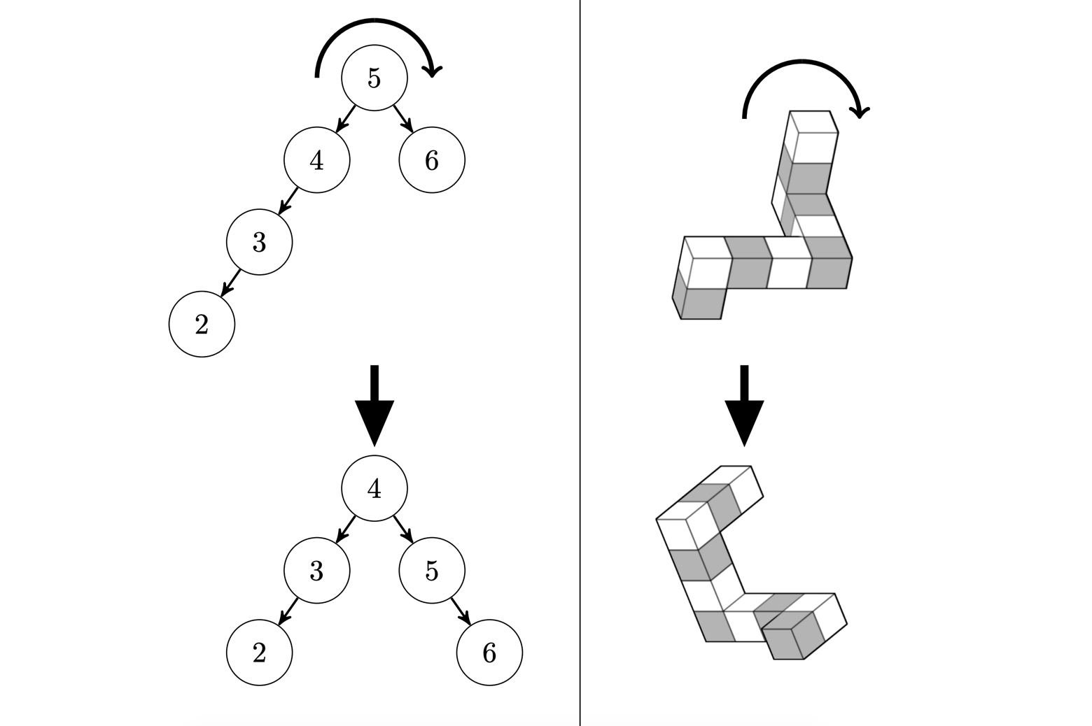"""Mind reading"" study looks inside coders' brains"