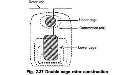 Double cage rotor