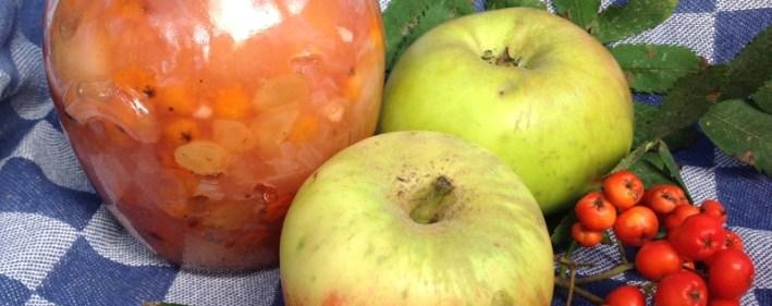 appel-lijsterbes chutney | een tafel vol