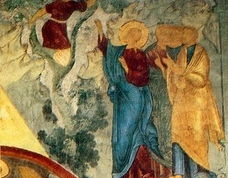 Jan 14; Zacchaeus Sunday, Tone 7; Leave-taking of the Feast of the Holy Theophany; Our Venerable Fathers Massacred in Sinai and Rhaithu (c. 370); the Repose of the Holy Equal-to-the Apostles Nina, Enlightener of Georgia