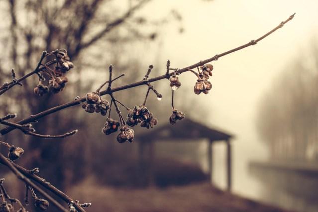 Kevad jõuab Soome