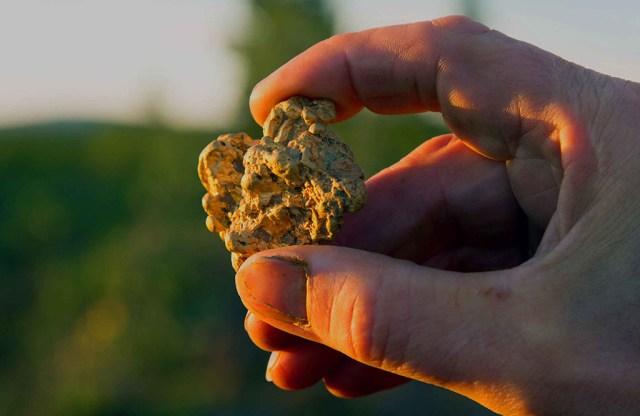 Lapimaalt leiti taas suur kullakamakas