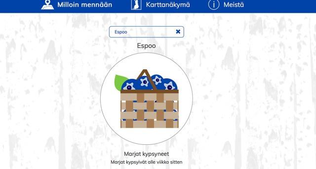 Millal ja kuhu minna Soomes mustikale? Abiks on mustikaveebid
