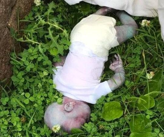Verdtarretav lugu: New Yorgi ametivõimud uurisid tunde lapse surma juhtumit – pärast tuli välja, et see oli nukk